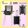 Professional makeup trolley cosmetic case with lighted mirror