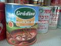 Vendita fabbrica di salsa di pomodoro/ketchup/concentrato di pomodoro