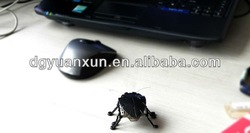 2015 hottest electronic high quality plastic toy pets hex bug, supplier on alibaba