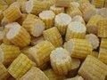 Congelados de la mazorca de maíz