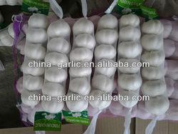 "China 100% ""Natural Garlic"" ( 2014 new crop. best quality)"