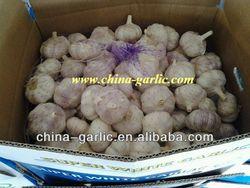 "Chinese Fresh "" Natural Garlic"" - OEM Supplier in China"