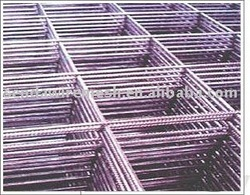 Galvanized Welded Wire Mesh ( Factory and Exporter )