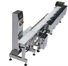 CWM-220 Food/baverage processing machine conveyor weigher