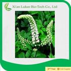 Competitive Price Black Cohosh P.E. 2.5~5% Triterpene glycosides