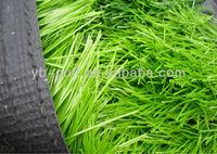 PGM Grass Seed Door Mat Plastic Grass Car Mat