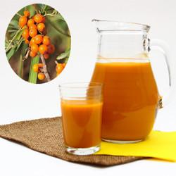 Halal OEM natural seabuckthorn fresh juice 30or 50ml/bottle