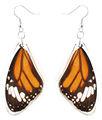 Único hermoso REAL ala de la mariposa del pendiente