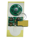 Programmable sound module