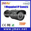 1MP hd h 264 Outdoor Waterproof Network home security ip spy camera
