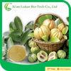 100% Natura garcinia cambogia hca 60%