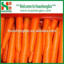2015 new crop fresh carrots