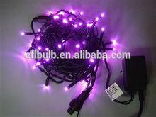 PVC Wire 100 Cheap Clear Bulbs Mini LED Christmas Light