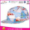 Design Your Own 5 Panel Hat Cap/ Wholesale 5 Panel Cap/ Blank 5 Panel Cap