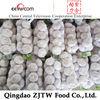 China garlic exporter garlic farmer and garlic wholesaler