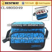 Portable electric cooler bag