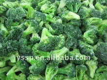 2013 new season frozen broccoli floret