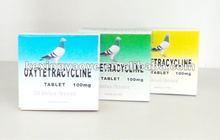 Paloma que compite con / Levofloxacin de la tableta