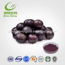 100% Natural Acai Berry P.E Anthocyanidins