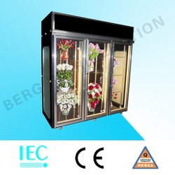 Glass with heater defrosting flower showcase