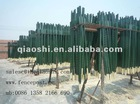 fence post for the farm land