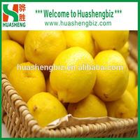Wholesale prices fresh lemons