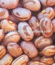 Beans in sacks