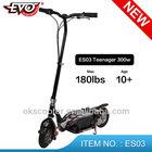ES03 alloy scooter 24V Front/Rear Disc