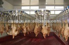 more experience halal slaughter line/ chicken plucking machine from china