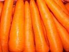 Import fresh carrot