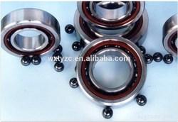 Ceramic bearings/Stainless steel bearings/Plastic bearings