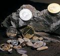 Brillant vieux chinois pièces de l'ancienne Coin copie Coin