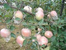 fruit protection bag