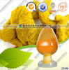 water soluble 95 % turmeric extract curcumin with FDA registered