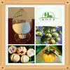 organic garcinia cambogia fruit extract