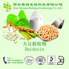 High Quality &Low Price Red Clover Extract Daidzein 98% CAS:486-66-8