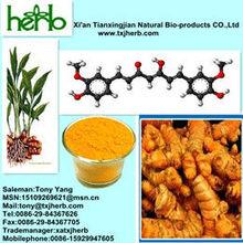 Turmeric Extract Curcumin 95% HPLC