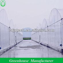 Economical UV Treated Plastic Film Greenhouse