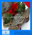 congelado cangrejo vivo de pescados y mariscos