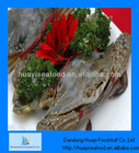 Frozen live crab seafood