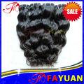 Paypal aceptado la extensión del pelo malasio de la onda periódica diseño caliente de la venta en ee.uu.