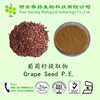 Manufacturer supply grape seed p.e.powder OPC(Proanthocyanidins)95% UV