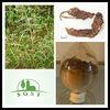 factory supply extract Radix Sophorae Tonkinensis Extract