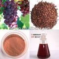 negro de sementes de uva extrato