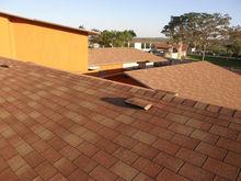 asphalt shingles / bitumen roofing