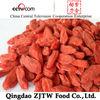 380 granules Ningxia Dried Golden Goji Berry