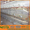 Galvanized Wire Mesh Cage Chicken Layer for Kenya Farms
