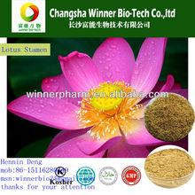 dry herb medicine / dry lotus stamen Nelumbo nucifera Gaertn stamen nelumbinis