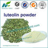 natural 90% luteolin, Cas No.: 491-70-3