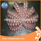 frozen flower style octopus
